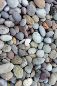 Beach stones at Buddleigh Salterton: August 2012