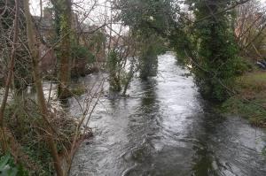 River itchen, Durngate, Winchester