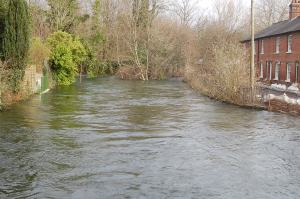 River Itchen, Water Lane, Winchester
